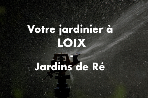 Jardinier Loix