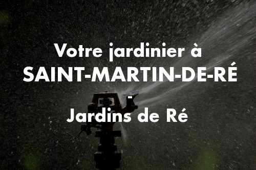 Jardinier Saint-Martin-de-Ré